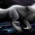 Паршивый волк